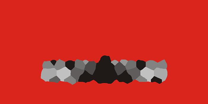 Diamed Organizasyon